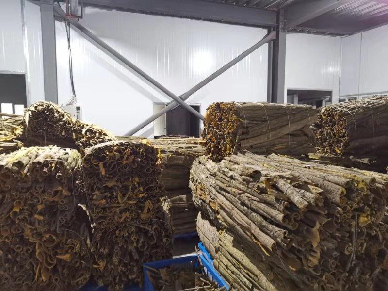 黄柏8吨统货供应